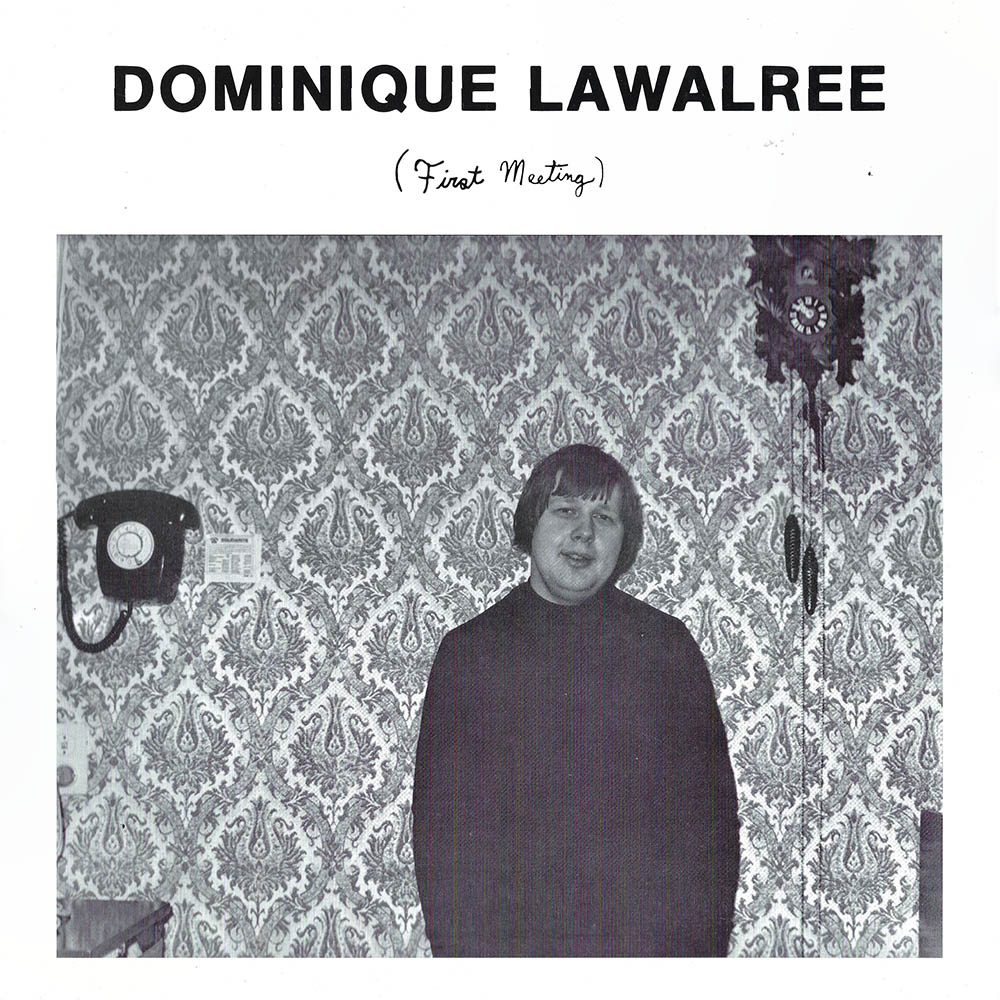 Dominique Lawalree – First Meeting album cover
